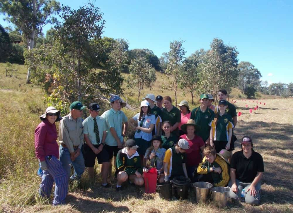 Kilcoy Landcare koala tree planting 30 April