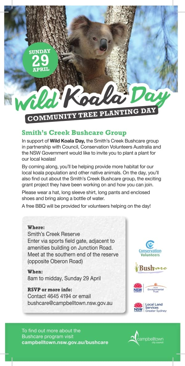 wild koala day tree planting campbelltown nsw