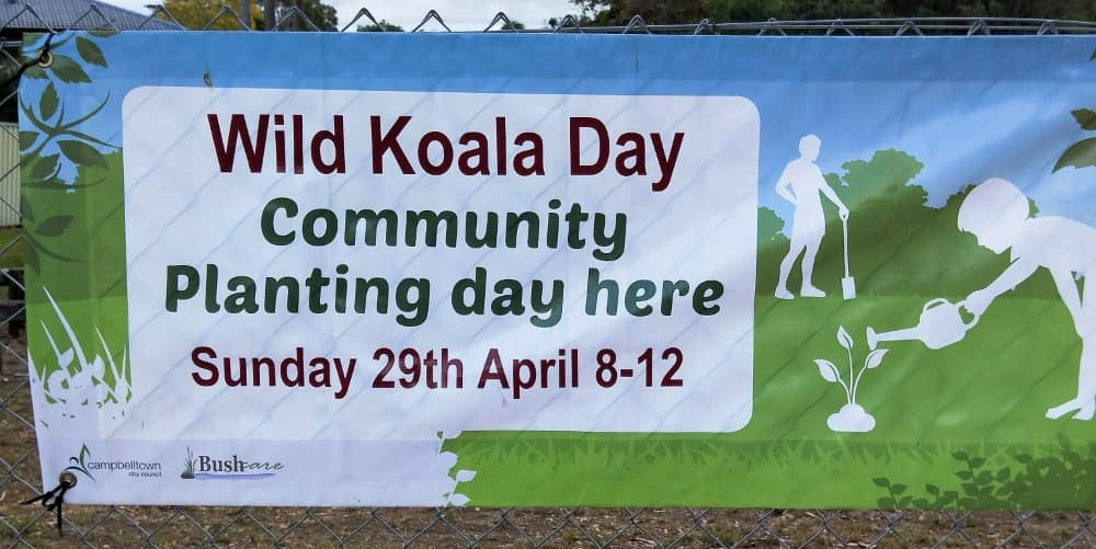 Wild Koala Day 2018 Results