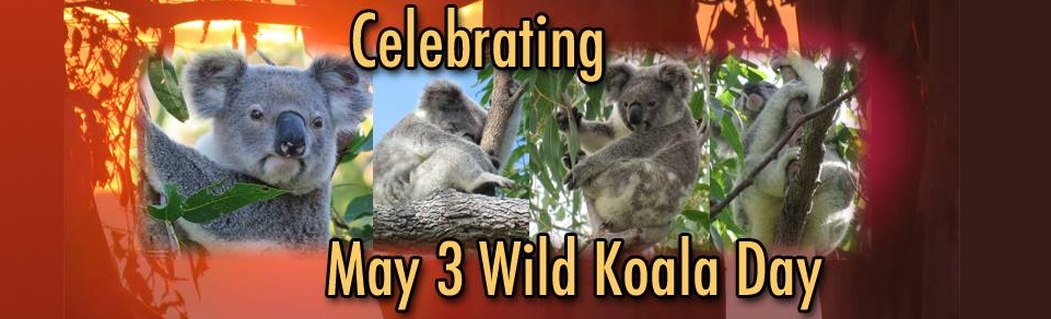koala-gardens-banner-long