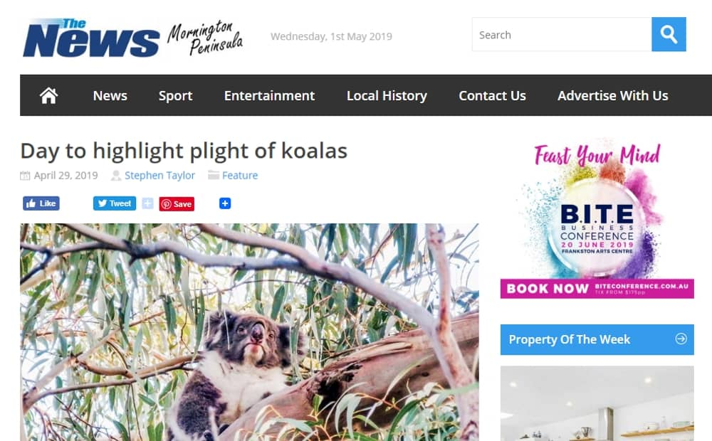 Wild Koala Day in the news in Melbourne