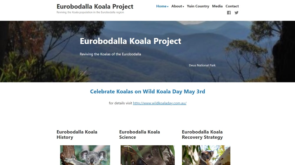 eurobodalla koalas new website