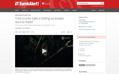 EurekAlert mention Wild Koala Day