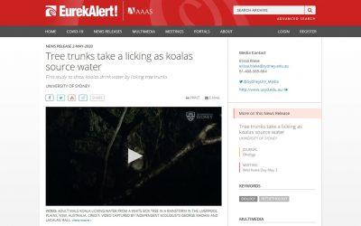 EurekAlert mention Wild Koala Day