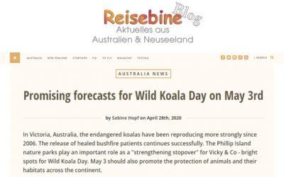 Wild Koala Day mentioned in Germany