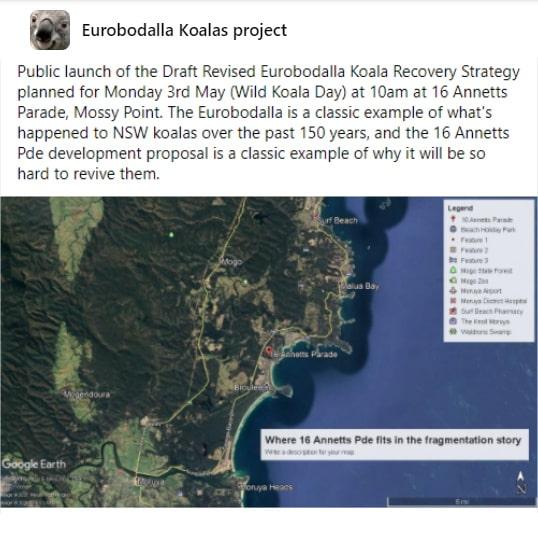 Event wild koala day Eurobodalla NSW