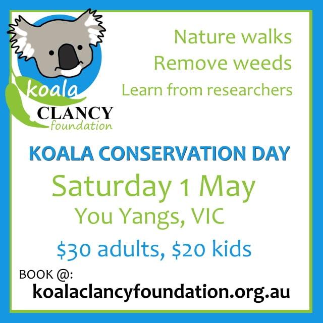 volunteer day for koalas Victoria