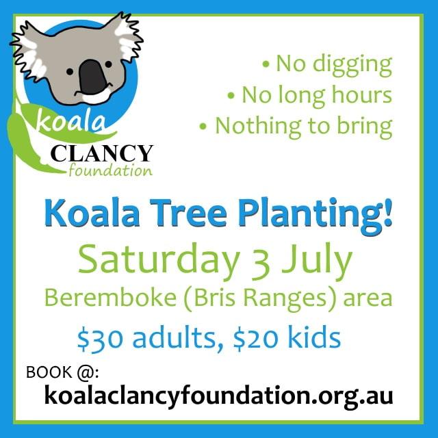 tree planting event for koalas Melbourne