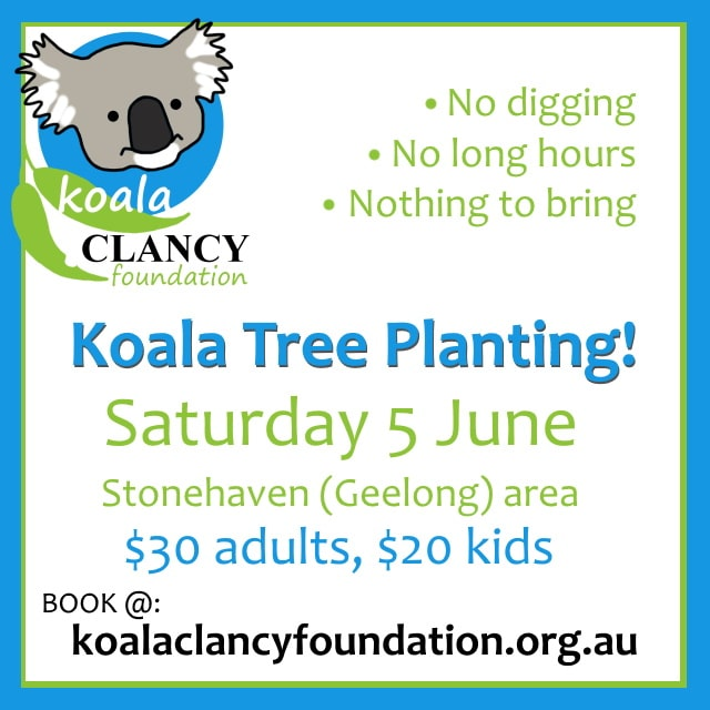 koala tree planting victoria Melbourne