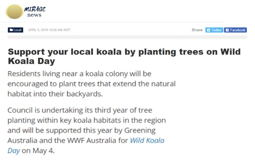 news campbelltown wild koala day tree planting