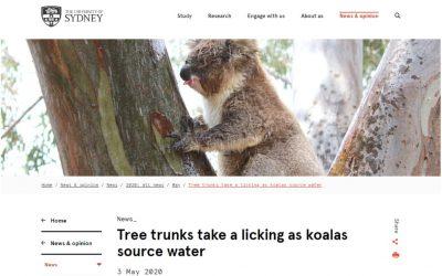 Sydney Uni mentions Wild Koala Day